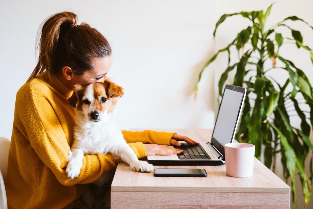 Home office inrichten: waar moet je rekening mee houden?