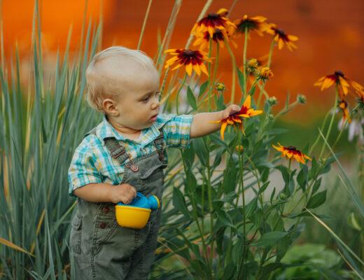 6 tips voor het inrichten van een kindvriendelijke tuin